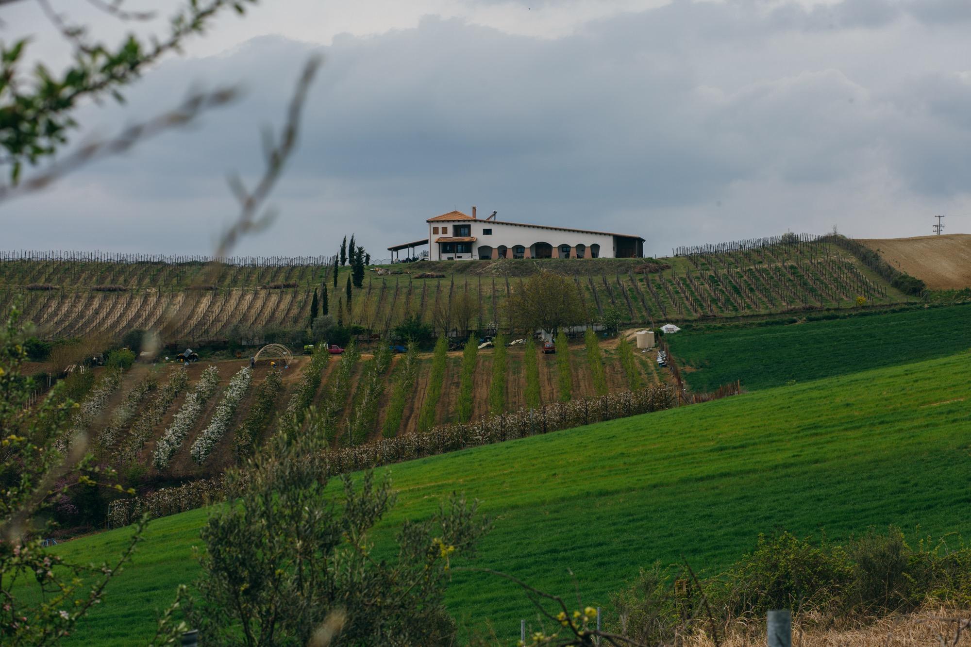 Nadir winery